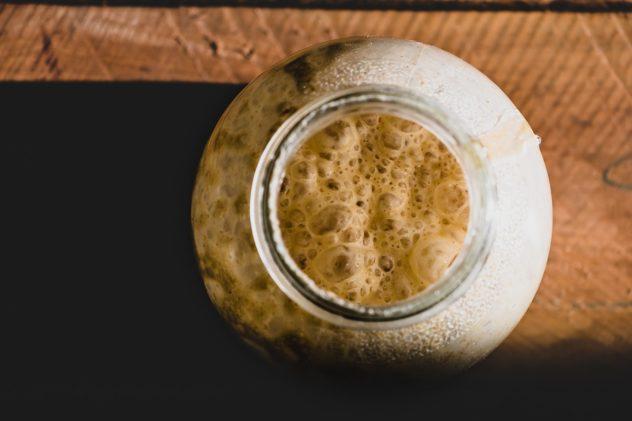 Brot backen mit Sauerteig und den richtigen STARTERKULTUREN