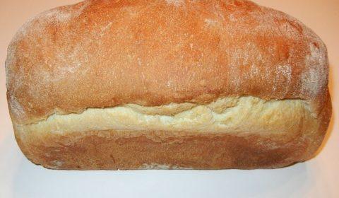 Brot backen Weißbrot. Römisches Brot selber machen.